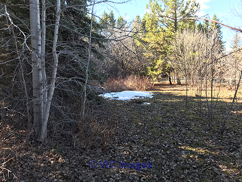 $81,000! Norris Beach Lot with lake access. Build your dream home! edmonton